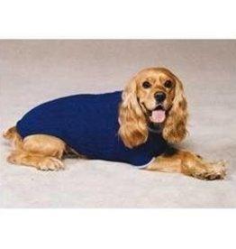 XXL Cobalt Blue Sweater