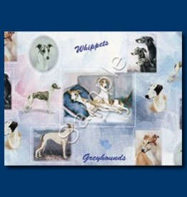 Wrapping Paper Greyhound/Whipper