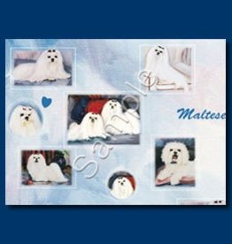 Wrapping Paper Maltese
