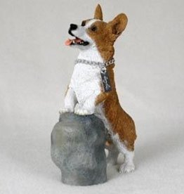 My Dog - Welsh Corgi Pembroke on Rock