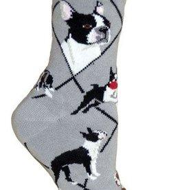 Boston Terrier on Gray Socks