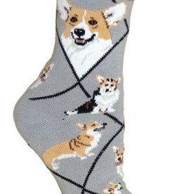 Corgi Pembrooke on Gray Socks