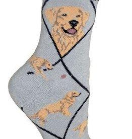Golden Retriever on Gray Socks