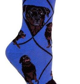 Rottweiler on Blue Socks