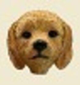 Doogie Head Golden Doodle