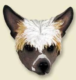 Magnetic Head-Chinese Crested