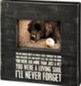 Box Frame - Ill Never Forget