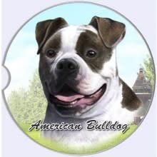 Absorbent Car Coaster - American Bulldog