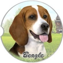 Absorbent Car Coaster - Beagle