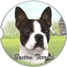 Absorbent Car Coaster - Boston Terrier