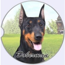 Absorbent Car Coaster - Doberman