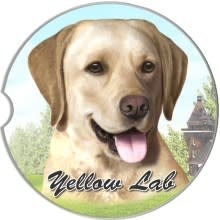 Absorbent Car Coaster - Labrador, Yellow