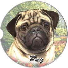 Absorbent Car Coaster - Pug, Tan