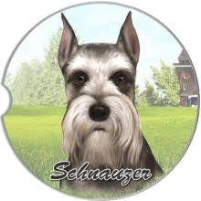 Absorbent Car Coaster - Schnauzer, Cropped