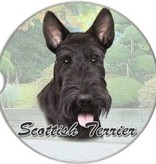 Absorbent Car Coaster - Scotty