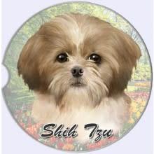 Absorbent Car Coaster - Shih Tzu, Tan & White, Puppy Cut