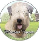 Absorbent Car Coaster - Soft Coat Wheaten Terrier