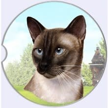 Absorbent Car Coaster - Siamese Cat