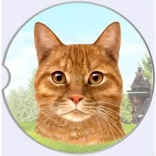 Absorbent Car Coaster - Orange Tabby Cat