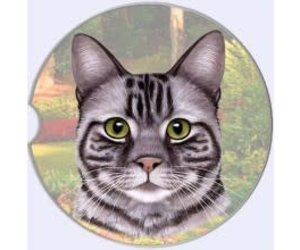 absorbent car coaster silver tabby cat captivating canines