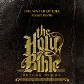 Holy Bible: Beyond Words DVDS