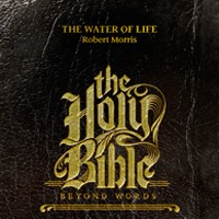 MUS WAREHOUSE OVERSTOCK Holy Bible: Beyond Words CDS