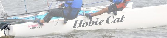 Hobie 20 Rudder Parts