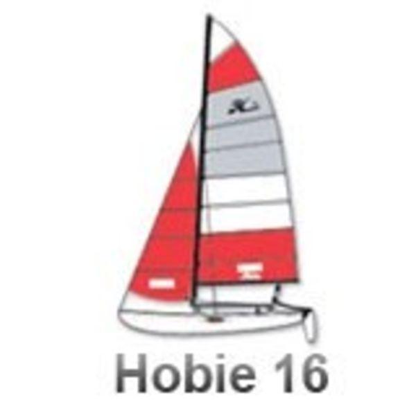Sail H-16 Main Special Order