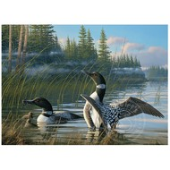 Cobble Hill Puzzles Cobble Hill Common Loons Puzzle 1000pcs