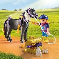 Playmobil Playmobil Groomer with Star Pony