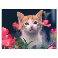 Melissa & Doug Melissa & Doug Curious Kitten Puzzle 30pcs_
