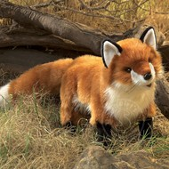 Folkmanis Folkmanis Red Fox Puppet