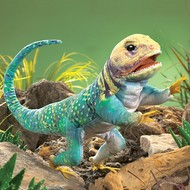 Folkmanis Folkmanis Collared Lizard Puppet