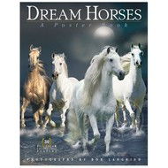 Workman Publishing Dream Horses A Poster Book