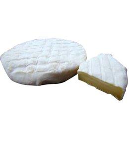 Queso Sinapa San Marcel- queso tipo Saint Marcelin