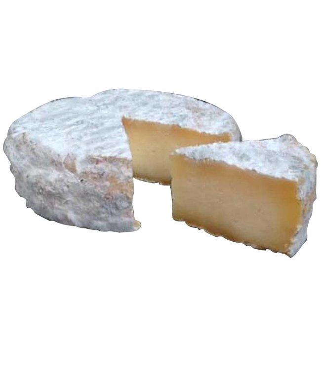 Queso Sinapa Rustico - queso tipo Tomme de Montagne