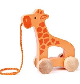 Hape Giraffe Push & Pull E0906