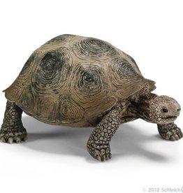 Schleich Giant tortoise (14601)