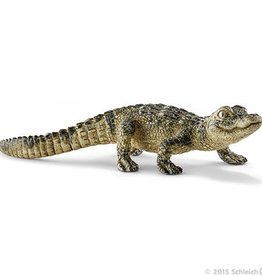 Schleich Baby Alligator (14728)