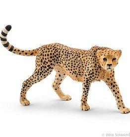Schleich Cheetah female (14746)
