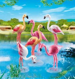 Playmobil Flock of Flamingos (6651)