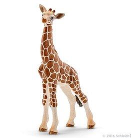 Schleich Giraffe calf (14751)