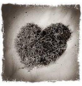 Moss Heart Card
