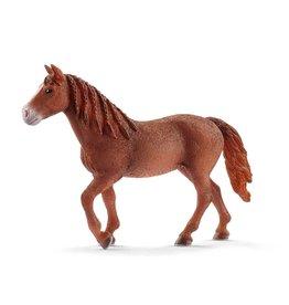 Schleich Morgan Horse Mare