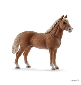 Schleich Morgan Horse Stallion