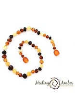 Healing Amber Raw Multi ~ Circle ~ 18