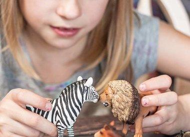 Animals and Dinosaurs