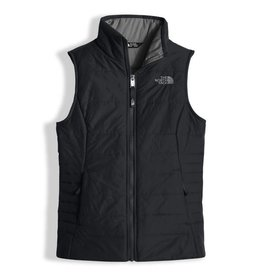 TNF G Harway Vest Black
