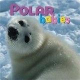 Polar Babies - Brant, Craig