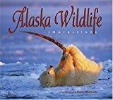 Alaska Wildlife Impressions - Steven Kazlo